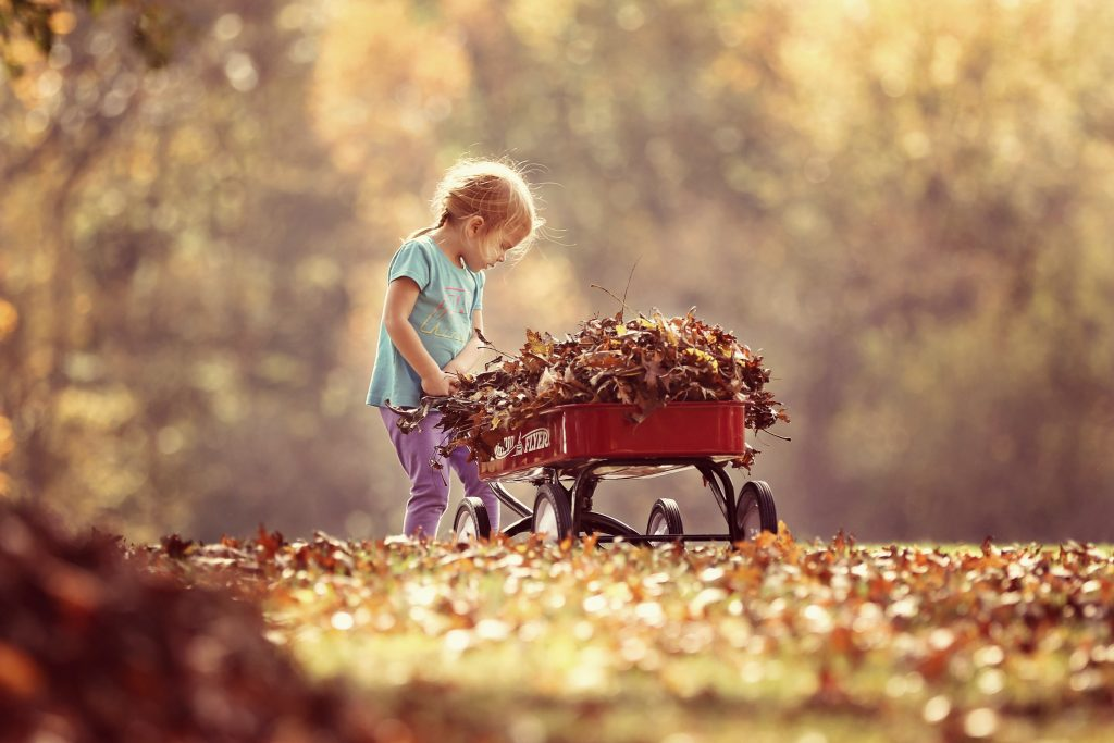 Child with wagon and leaves in the fall